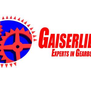 Κιβώτια ταχυτήτων – Σασμάν | Γαϊσερλίδης